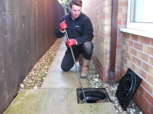drain cleaning cost