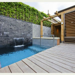backyard-decor-swimming-pool