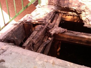 dry rot treatment and prevention