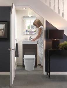 bathroom-under-stairs-229x300