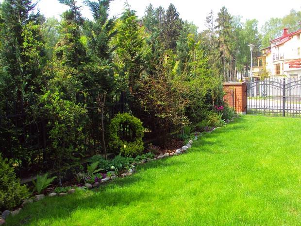 Simple Scandinavian Garden