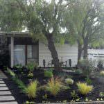 Mid Century Modern Landscape Transformation