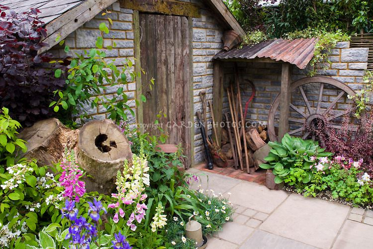 Old stone garden shed with beautiful flower garden, foliage plants, rustic farm tools and wagon wheel, purple foliage shrubs, Viburnum shrub in flower, Aquilegia columbines, Digitalis foxgloves, blue irieses, stone patio, stacked firewood, charming scene