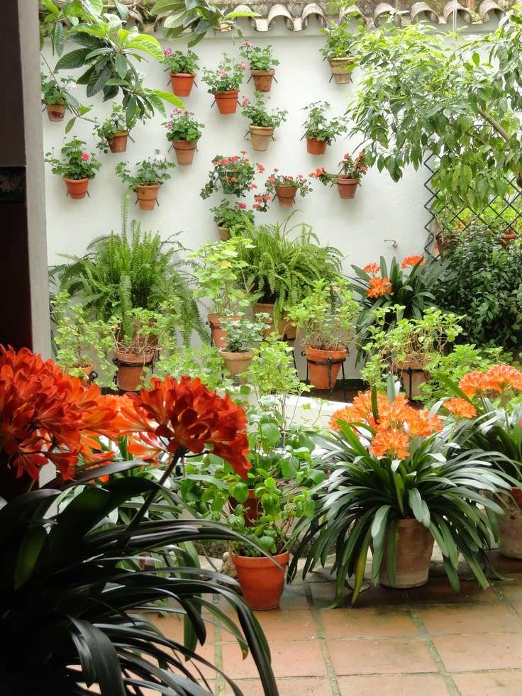 Mediterranean garden design ideas photos for your home for Mediterranean garden