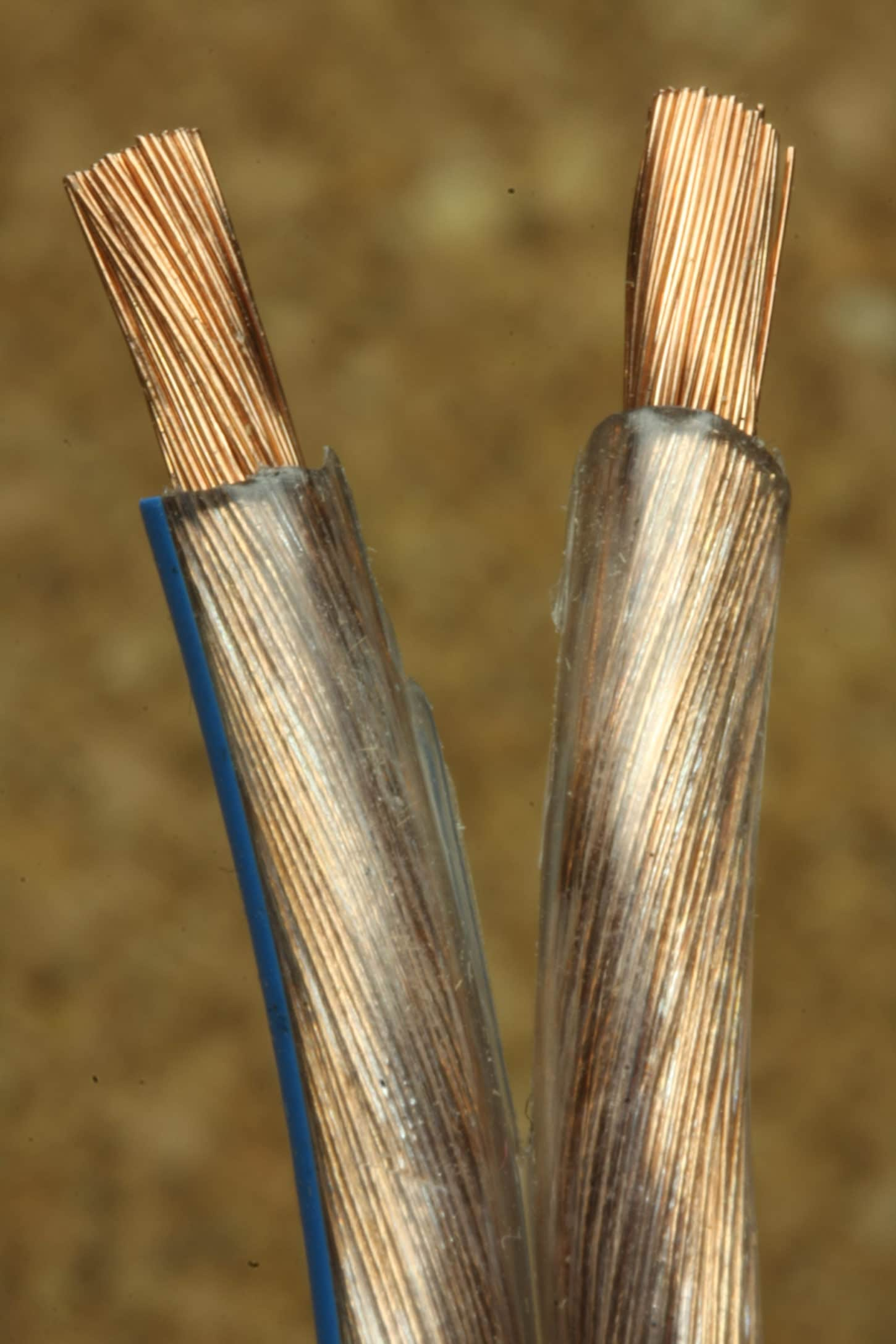 electrical-conductor