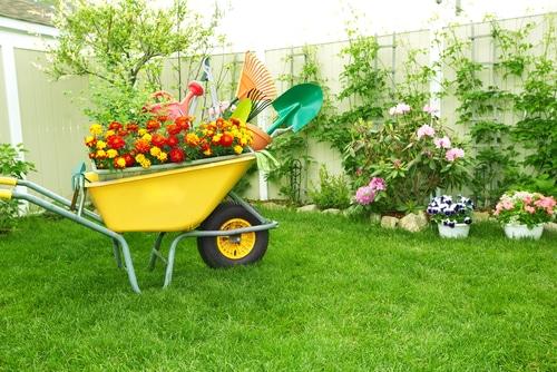 garden-makeover