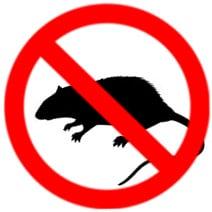 mouse extermination services