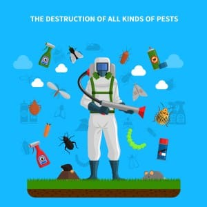pest-control-methods
