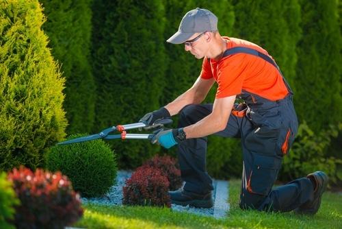 professional-gardener
