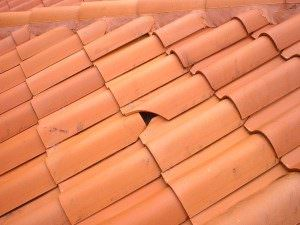 How To Replace Roof Tiles In 5 Easy Steps Homeadviceguide