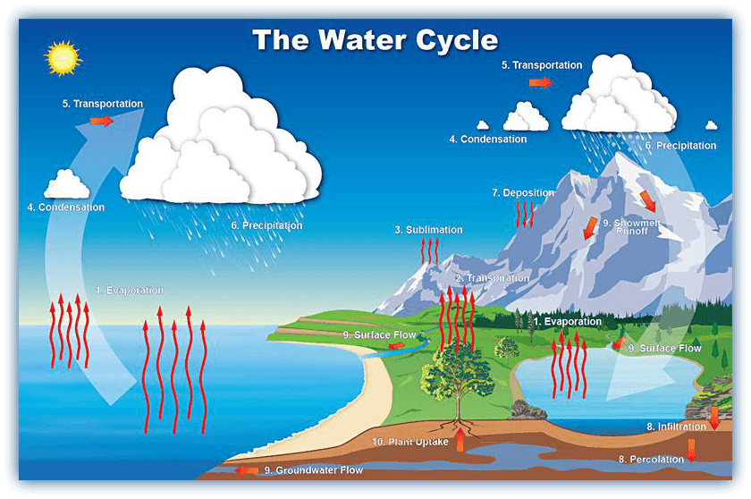 water-cycle-information