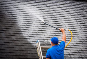 Roof Cleaning Cost Uk Roof Moss Removal Cost