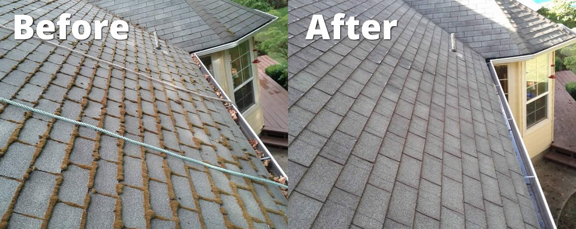 roof cleaning prices